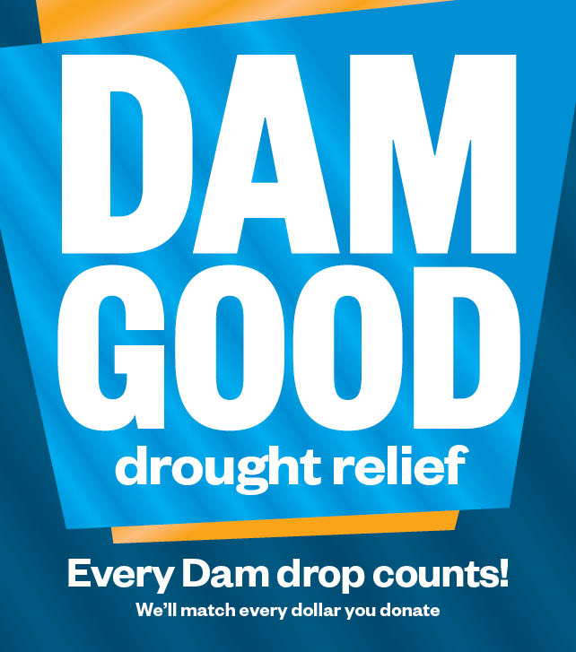 Dam Good Webtiles 642 x 727